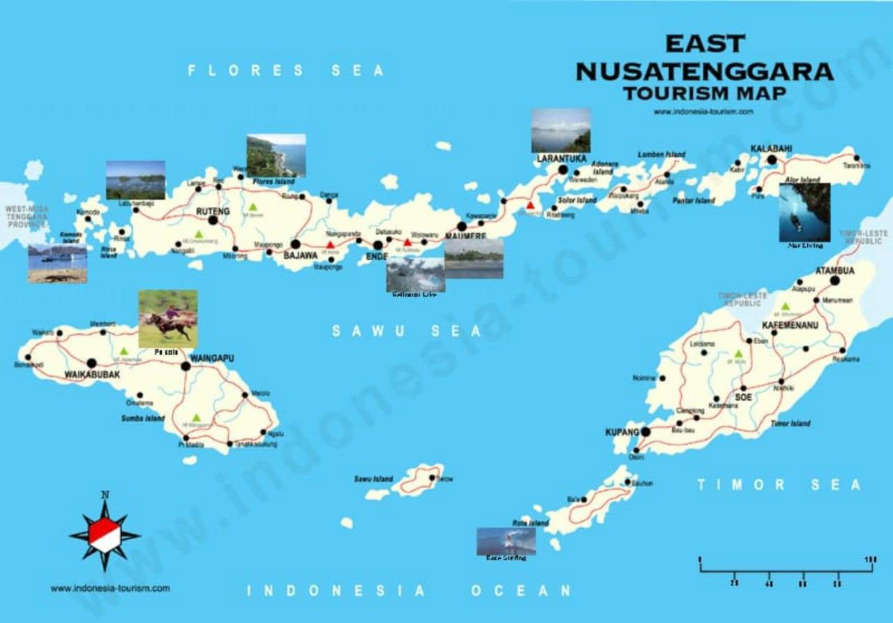 jasa pasang iklan gratis Nusa Tenggara Timur NTT