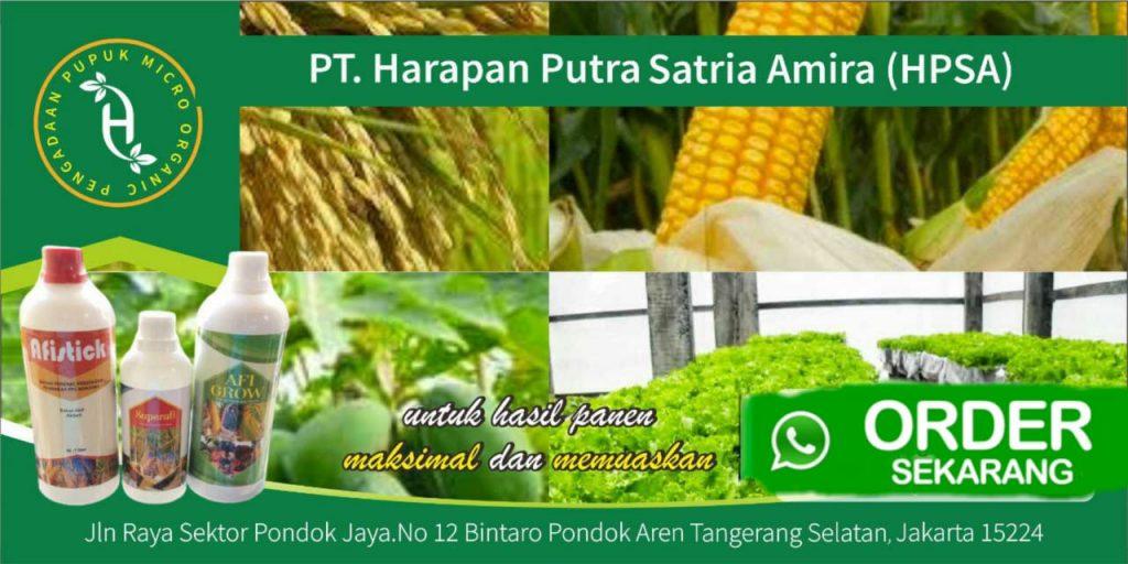 Lowongan Kerja Sales Marketing PT Harapan Putra Satria Amira ( HPSA ) Cabang Makassar